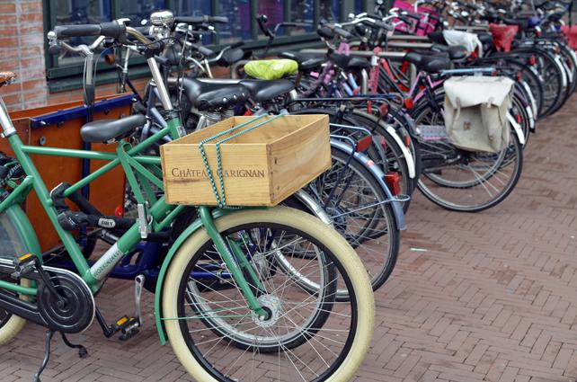 am_bike4.jpg