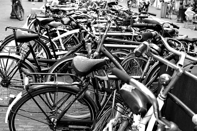 ams_cycles.jpg