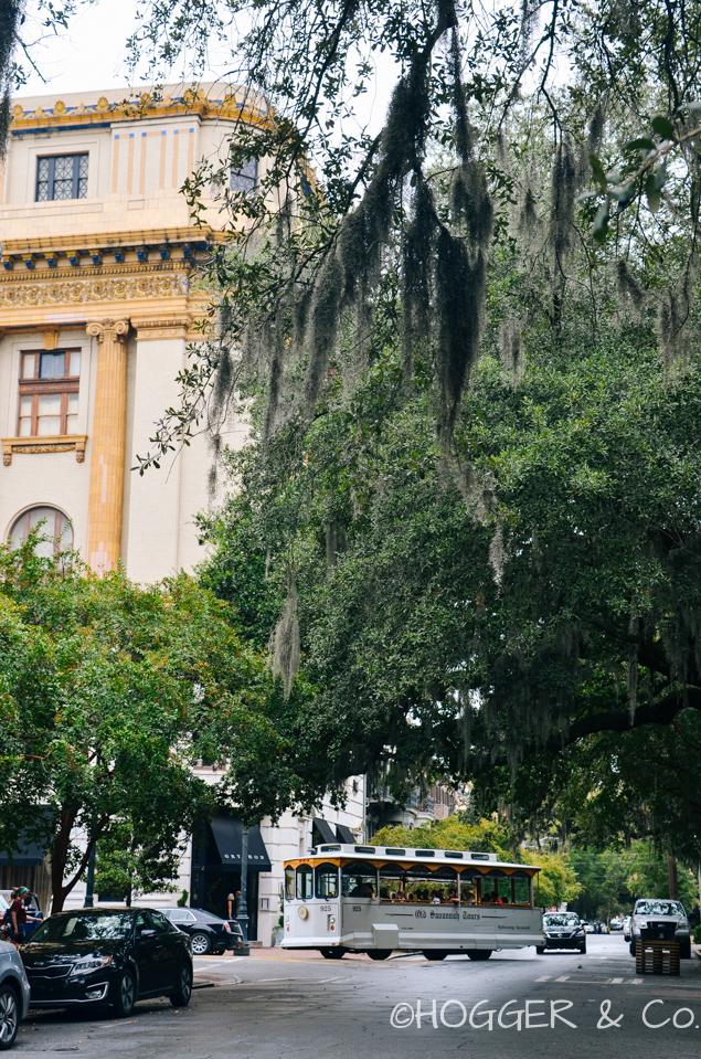 Savannah_Squares_Houses_2013_©HOGGER&Co._016.jpg