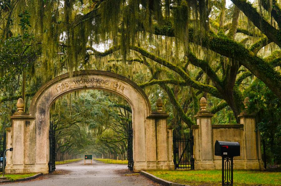 Savannah_Wormsloe_Plantation_2013_©HOGGER&Co._029.jpg