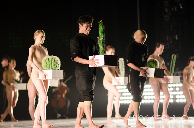 BostonBallet_Pricked2014_©HOGGER&Co._Cacti_Blog_037.jpg