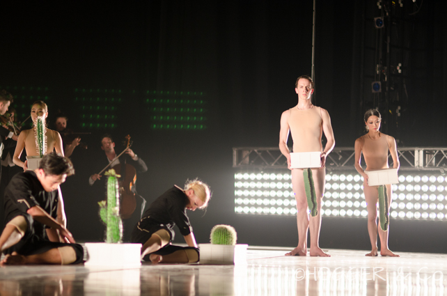 BostonBallet_Pricked2014_©HOGGER&Co._Cacti_Blog_036.jpg