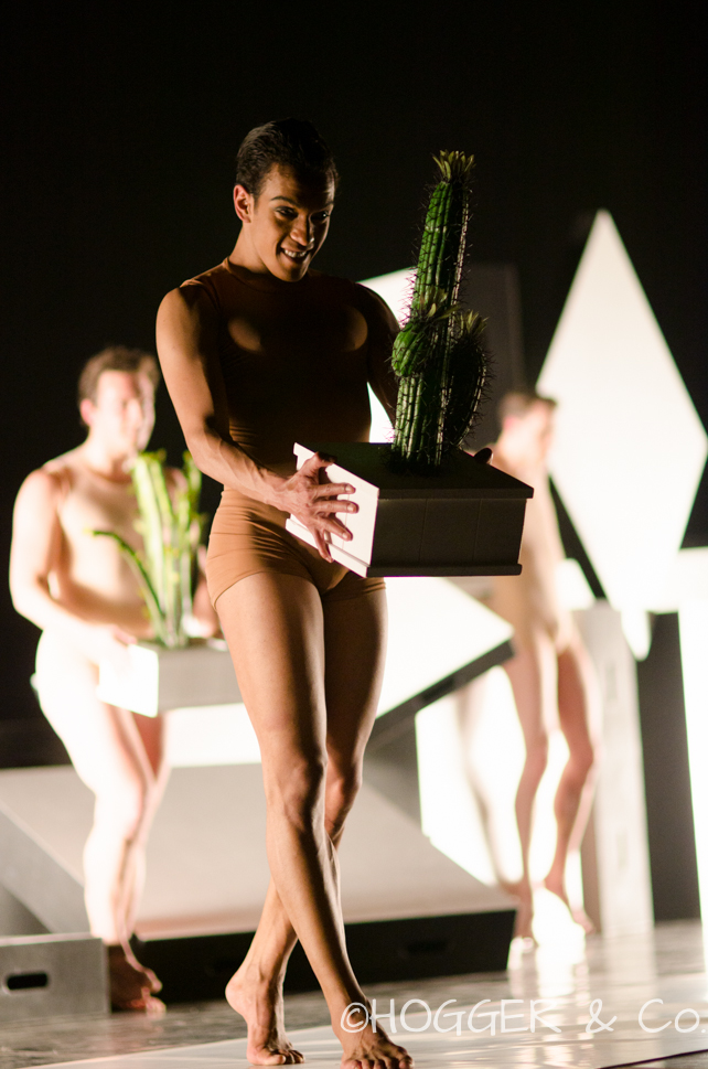 BostonBallet_Pricked2014_©HOGGER&Co._Cacti_Blog_038.jpg