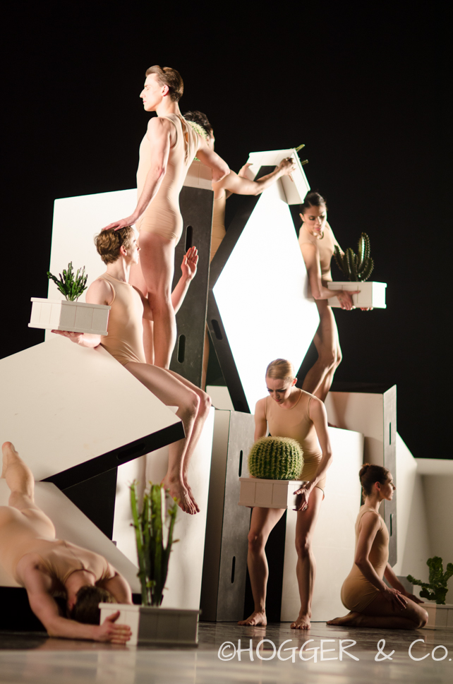 BostonBallet_Pricked2014_©HOGGER&Co._Cacti_Blog_035.jpg