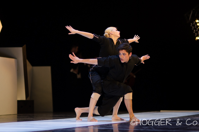 BostonBallet_Pricked2014_©HOGGER&Co._Cacti_Blog_026.jpg