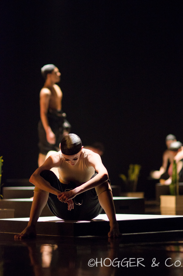 BostonBallet_Pricked2014_©HOGGER&Co._Cacti_Blog_015.jpg