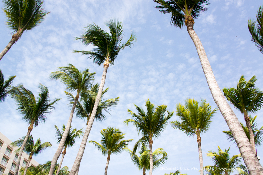 Aruba_Hyatt_©HOGGER&Co._WM_016.jpg