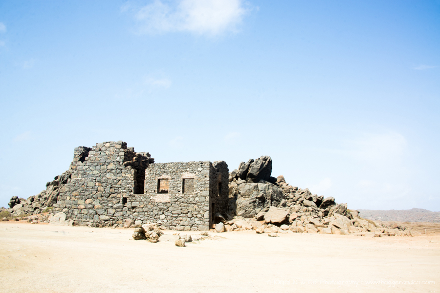 Aruba_Hyatt_©HOGGER&Co._WM_044.jpg
