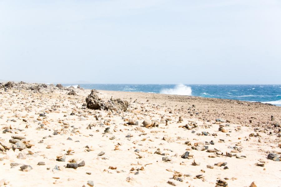 Aruba_Hyatt_©HOGGER&Co._WM_051.jpg