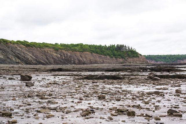 Nova_Scotia_©Hogger&Co._blog_066.jpg