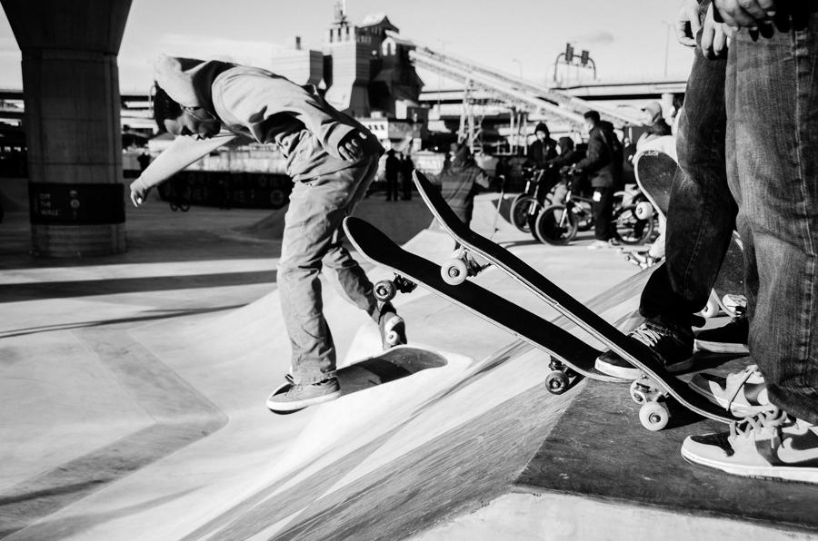 SkateboardPark_©Hogger&Co_015.jpg