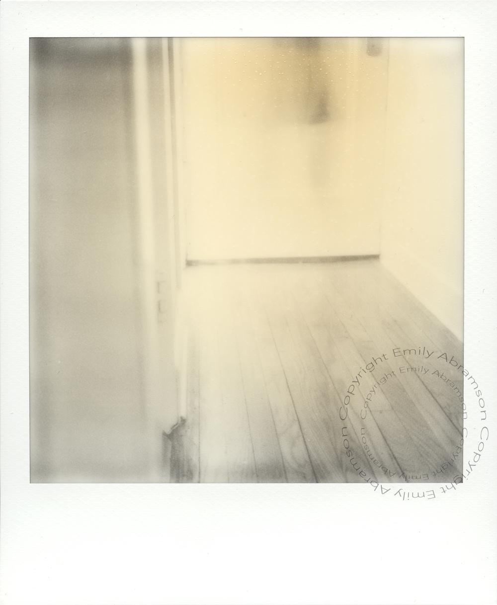 Polaroid 6WM.jpg