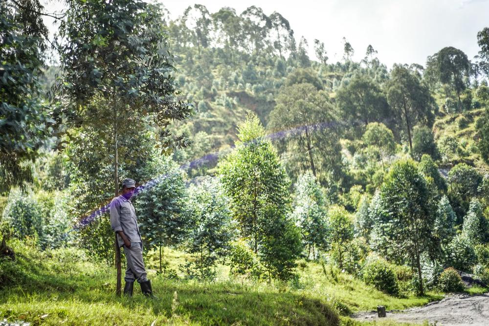 Rwanda edits-121.jpg