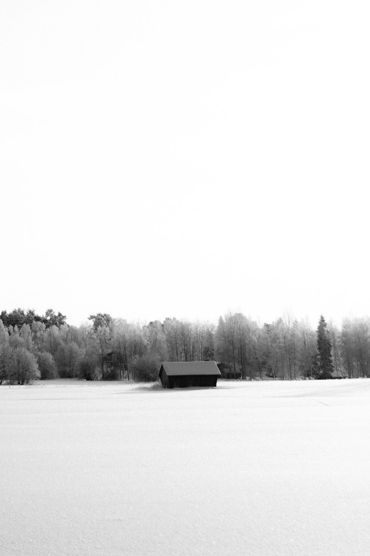 Volvo Sweden edits-58.jpg