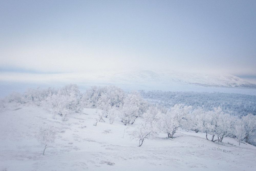 Kristian Rondane-50.jpg