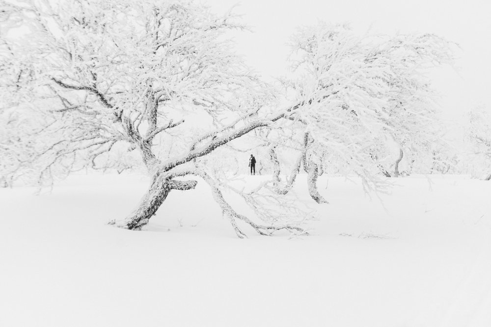 Kristian Rondane-66.jpg