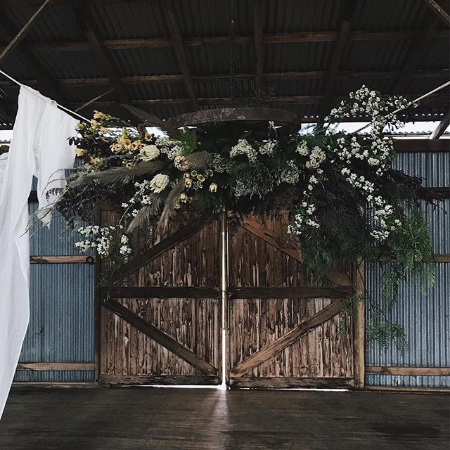 Oh George | those rugged types are our favourite 🌿#waitingforgeorge #flora #sydneyflorist #flowers #wherethewildthingsare #wherethewildthingsbloom #australiana #wildandfree #waldara #tohavetohold