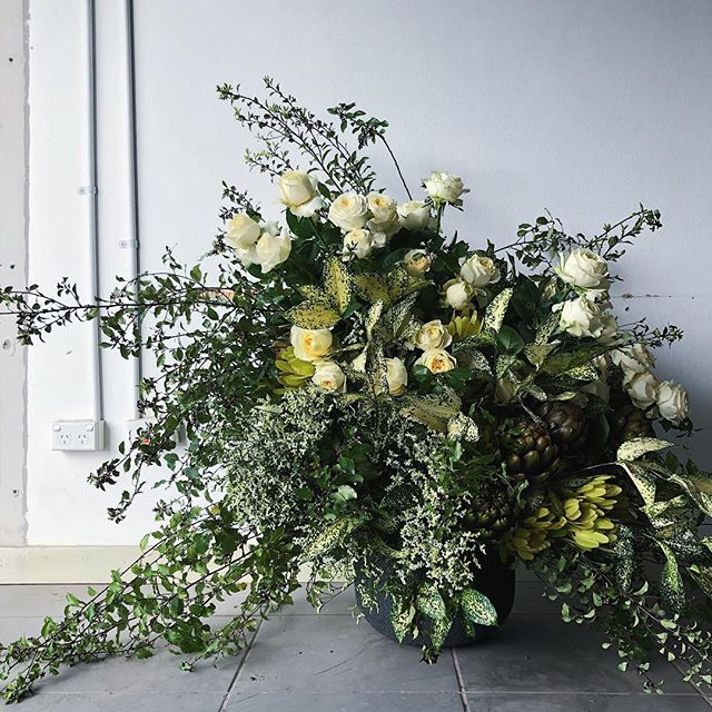 Oh George | she was an understated wallflower that didn't know her beauty #waitingforgeorge #flora #florist #flowers #sydneyflorist #hayqween