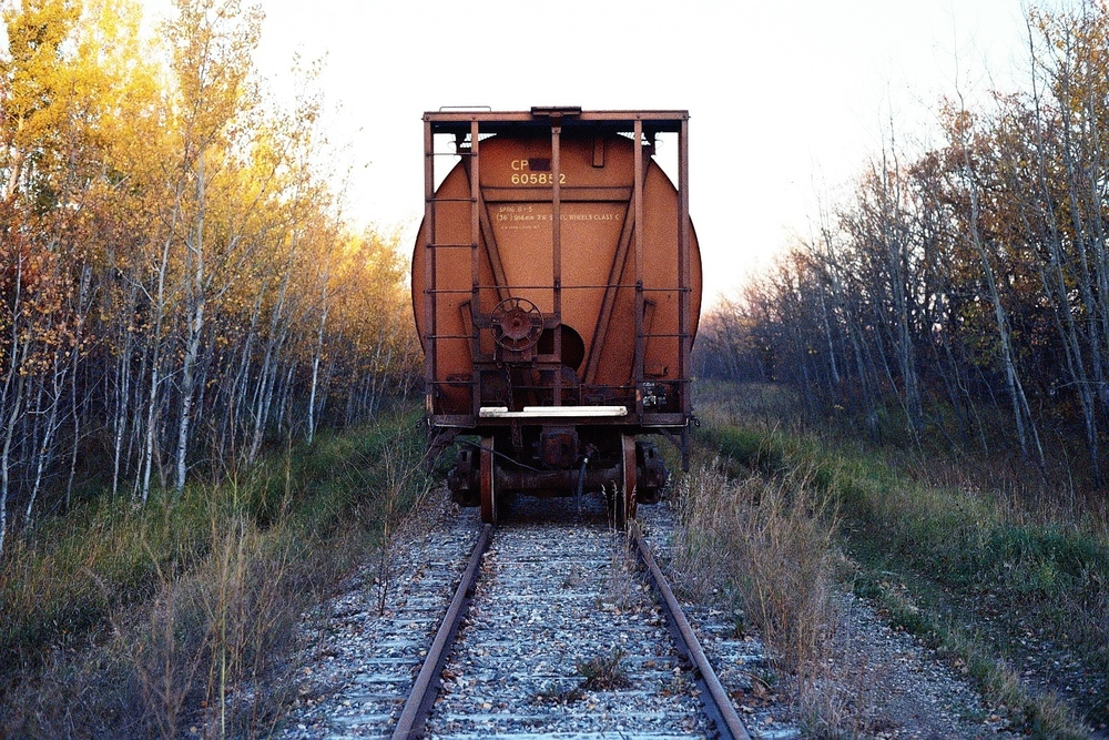 taylor_sheppard_photographer_interlake_train_fall_film.jpg