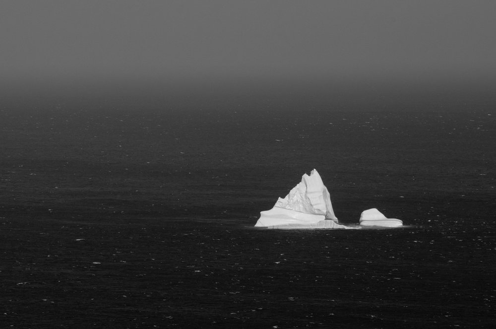 polar-visual-taylor-sheppard-photography-photo-video-motion-design-graphic-stonewall-winnipeg-manitoba-newfoundland-st-johns-iceberg-iceburg-ice-berg-signal-hill-canada-black-white.jpg