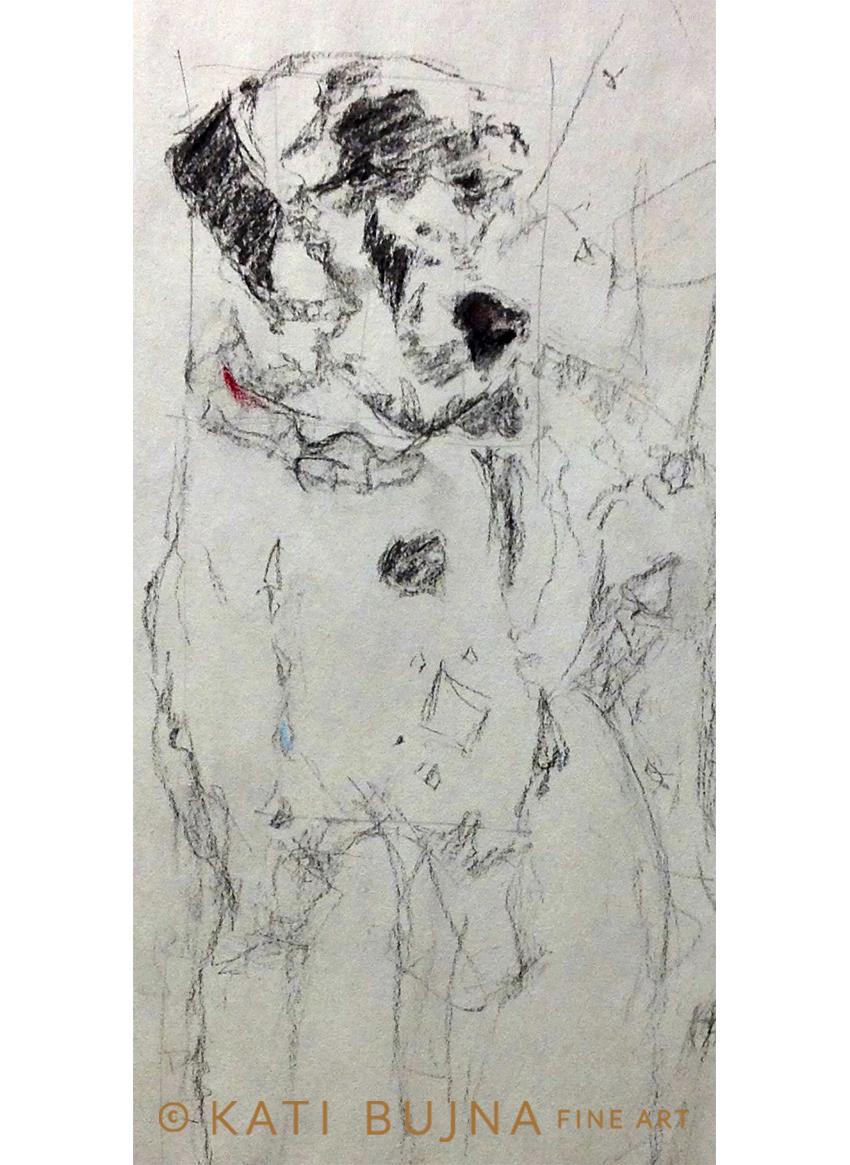 katibujnafineart-custom-painting-2016-2-Zeus-greatdane-sketch.jpg