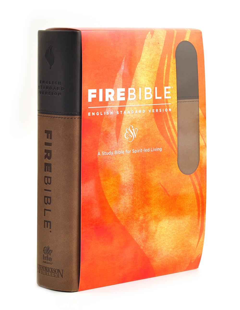 FireBrown_5.jpg