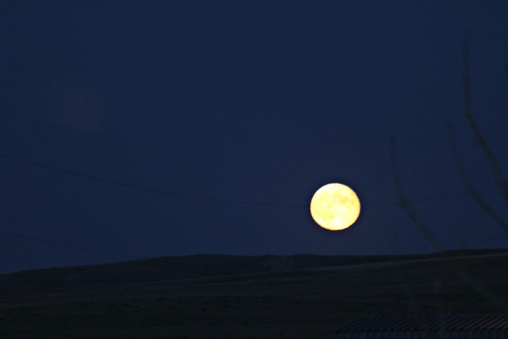 The moon rise over the farm.