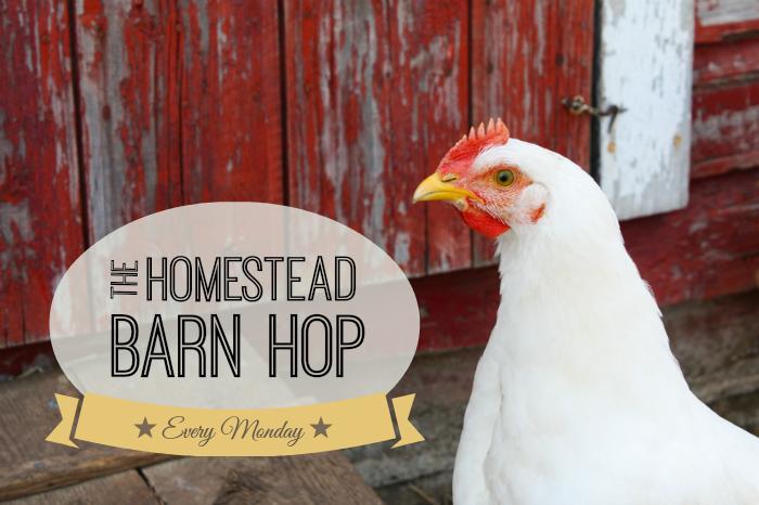 http://www.theprairiehomestead.com/2014/03/homestead-barn-hop-149.html