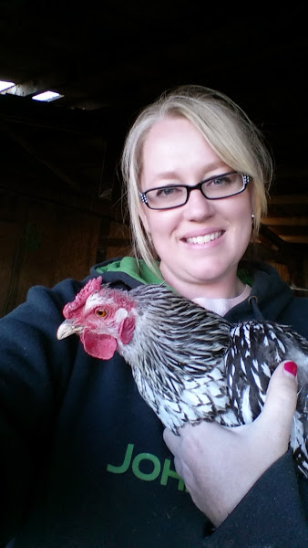 This is Eloise, my favorite hen.  She gets the honor of being the very first chicken I have ever taken a selfie with. :)