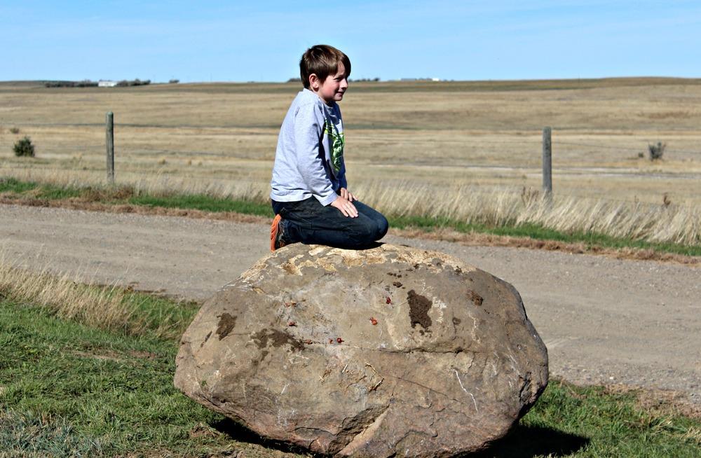 rockmove1.jpg