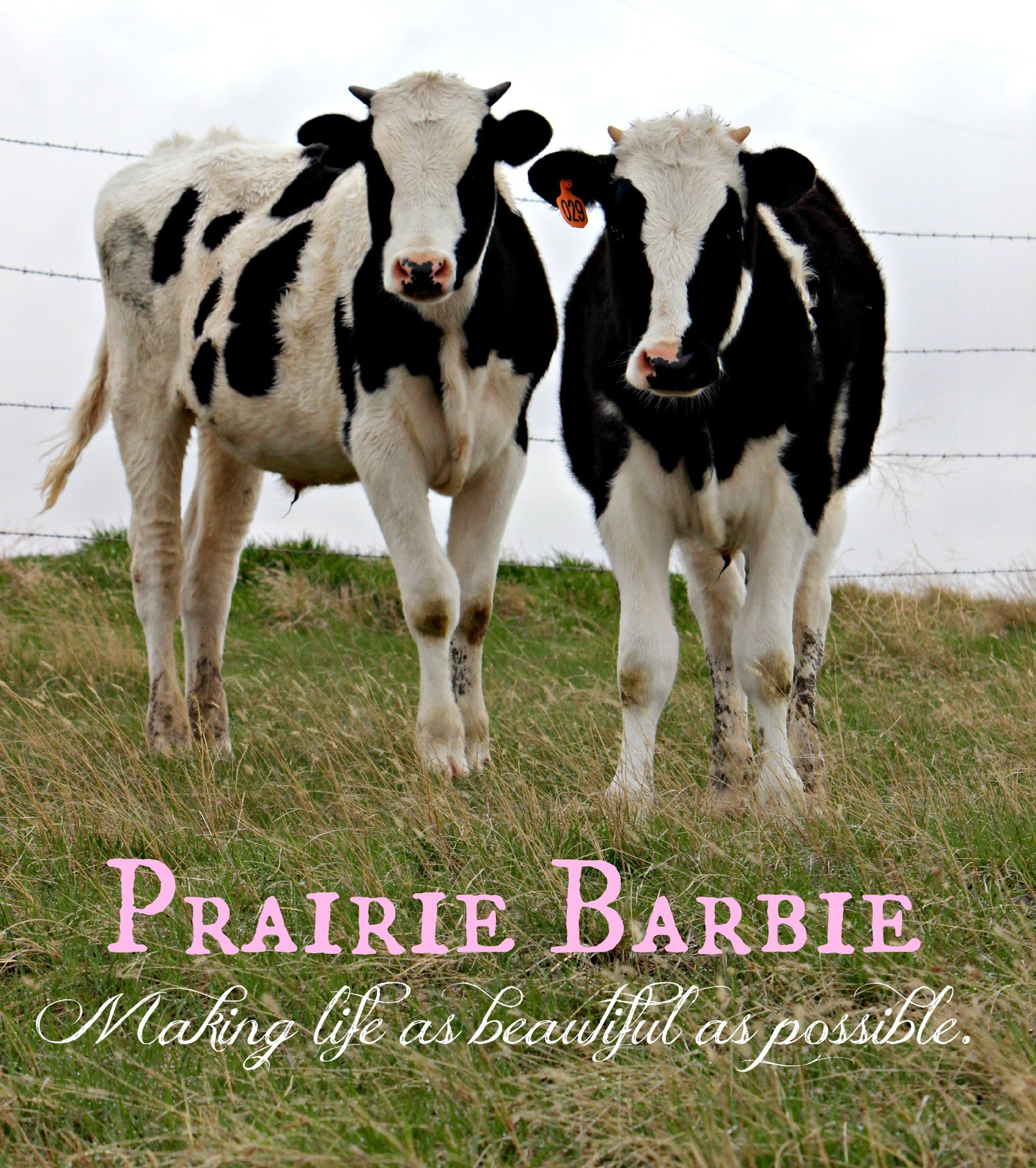 Prairie Barbie