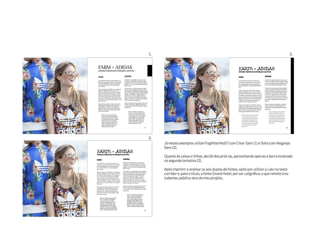 relatório_amanda_kraemer49.jpg
