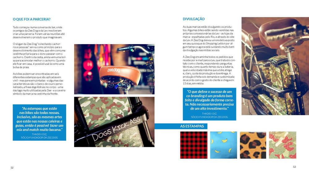 livro_pronto_sem_contorno27.jpg