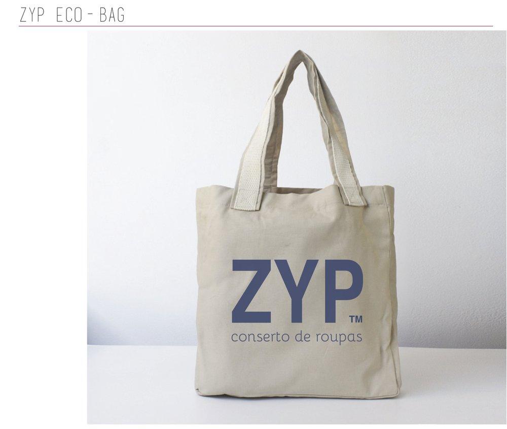_zyp30.jpg