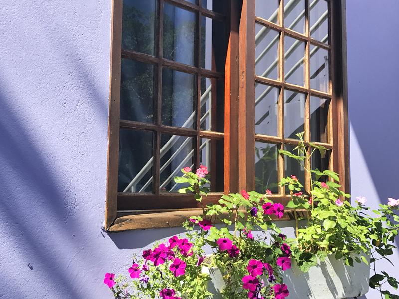 Detalhe das flores na janela dos apartamentos