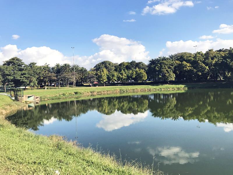 parque-ibirapuera-2.jpg