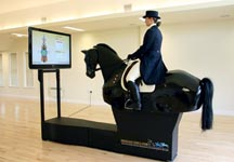 Interactive Horse Simulator one hour lesson $100 value