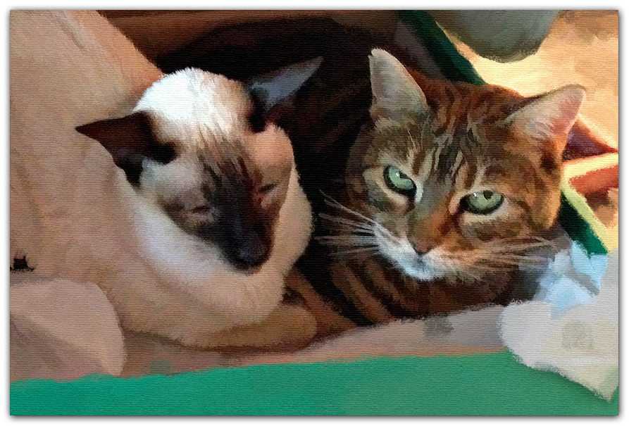 three-cats-in-box-painting-A-CU-PET.jpg