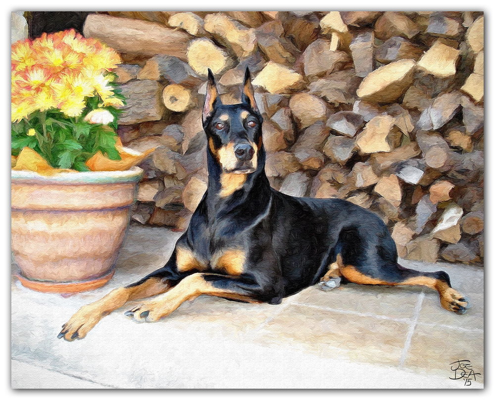 doberman pinscher dog painting