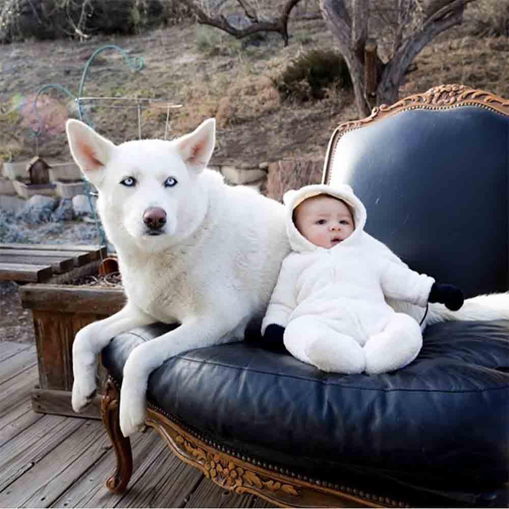 Photo-Dog-Baby.jpg