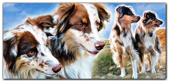 Untitled-1Red-Merle-Australian-Shepherds-Painting.jpg