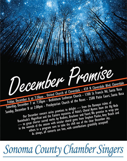 dec_promise_flyer.jpg