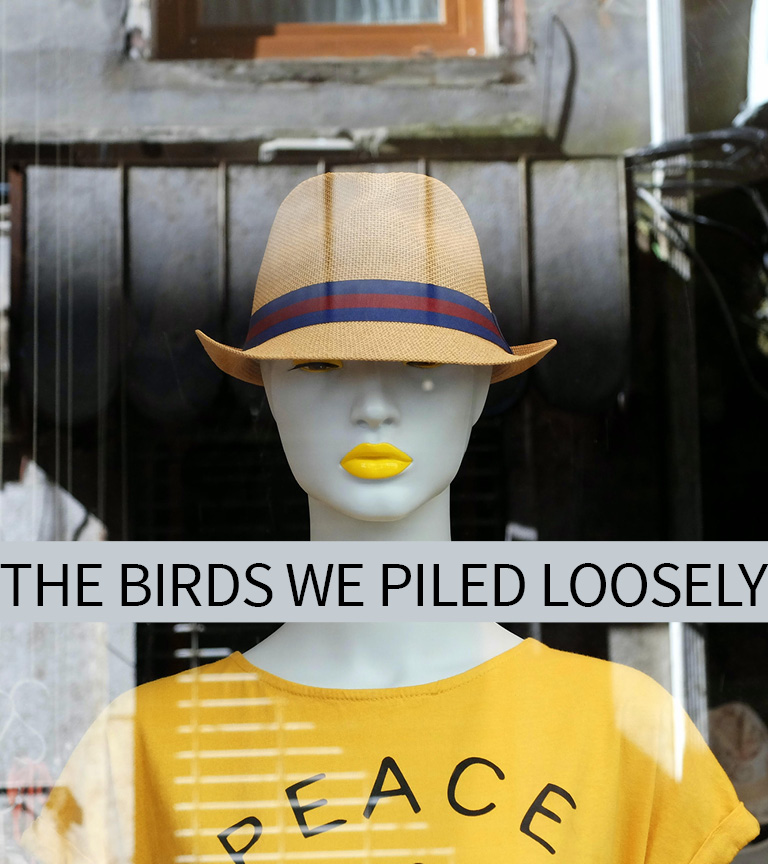 birds piled loosely - cover.jpg
