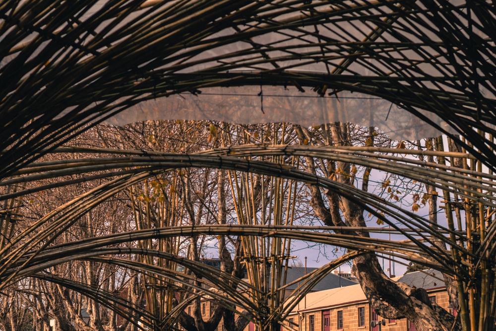 Hot house building_photography Mercurio Alvarado (27 of 40).jpg