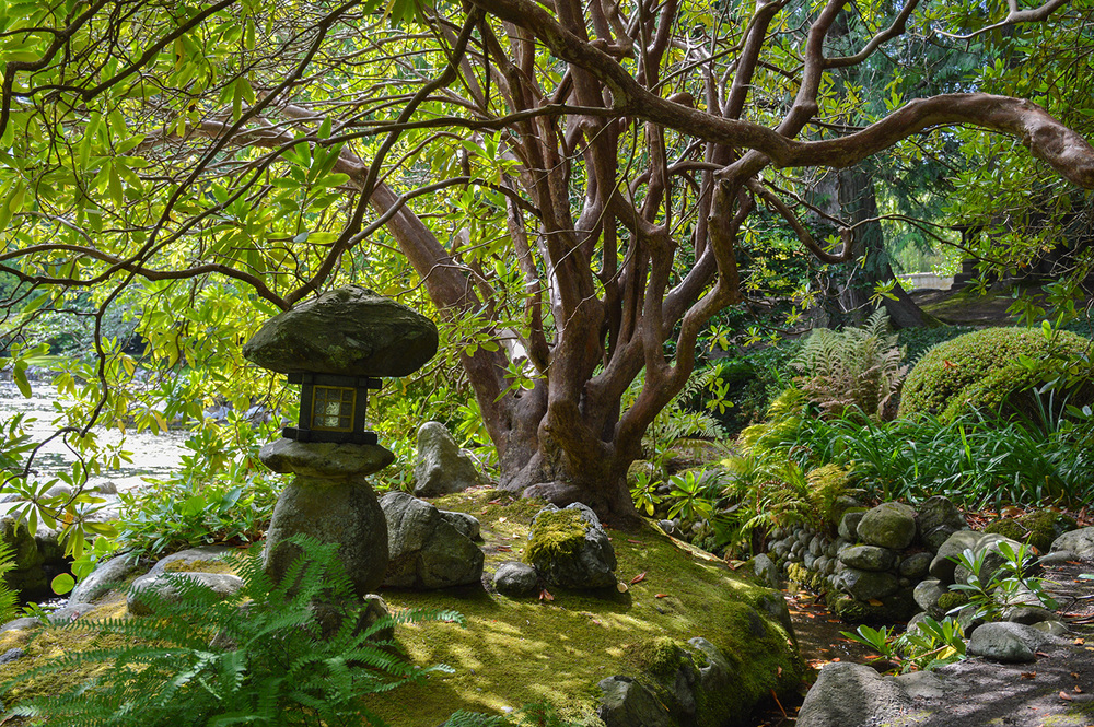 At Hatley Castle's Japanese Gardens.