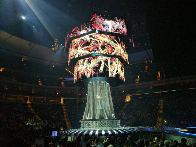 Photo I found online of the weirwood tree with violinist playing in it.