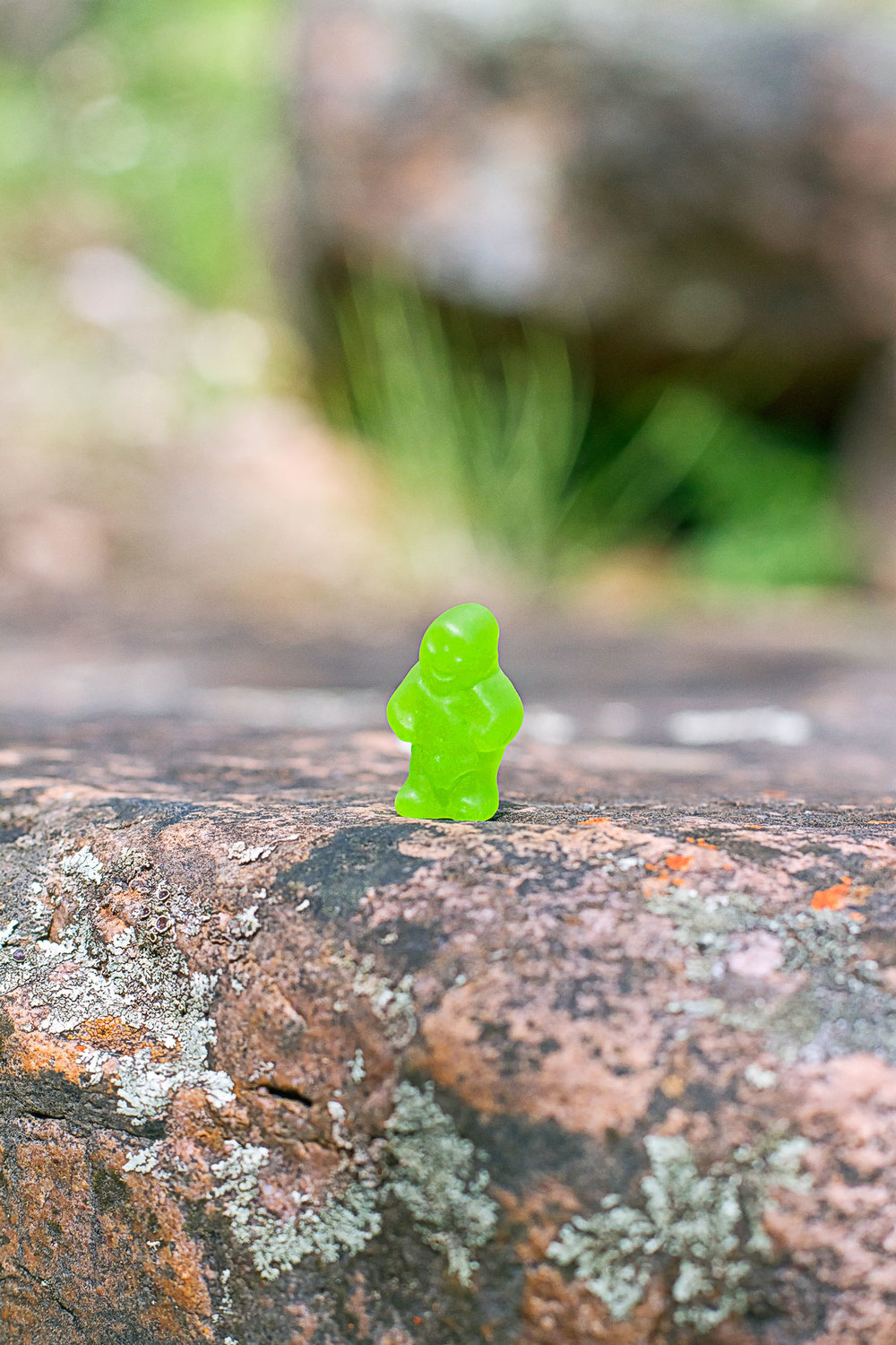13 Green Jelly Baby on rock.jpg