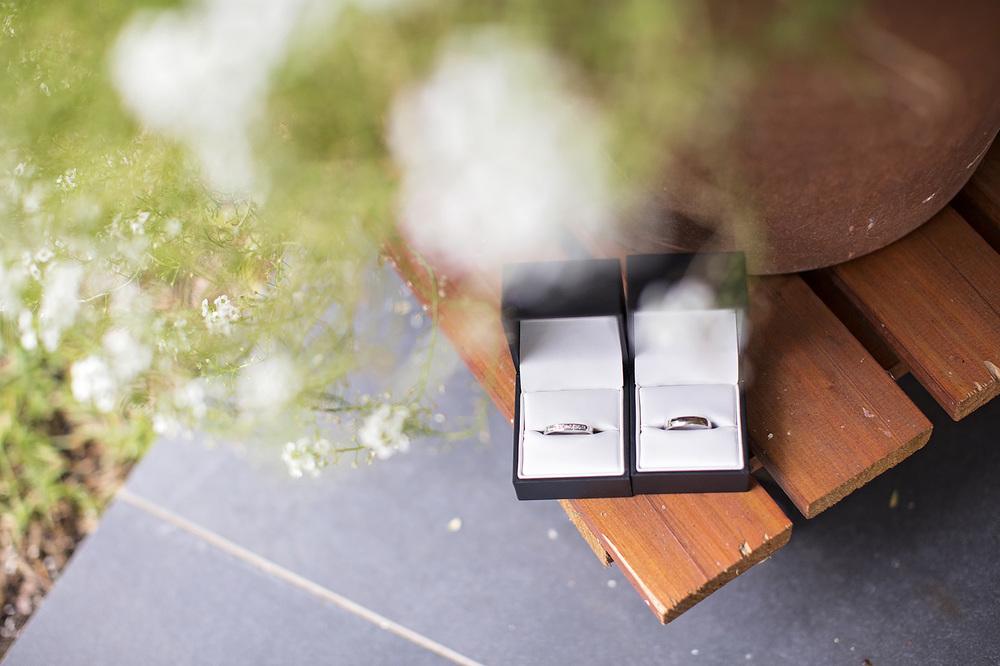 Stunning Adelaide Botanic Gardens Wedding 01.jpg