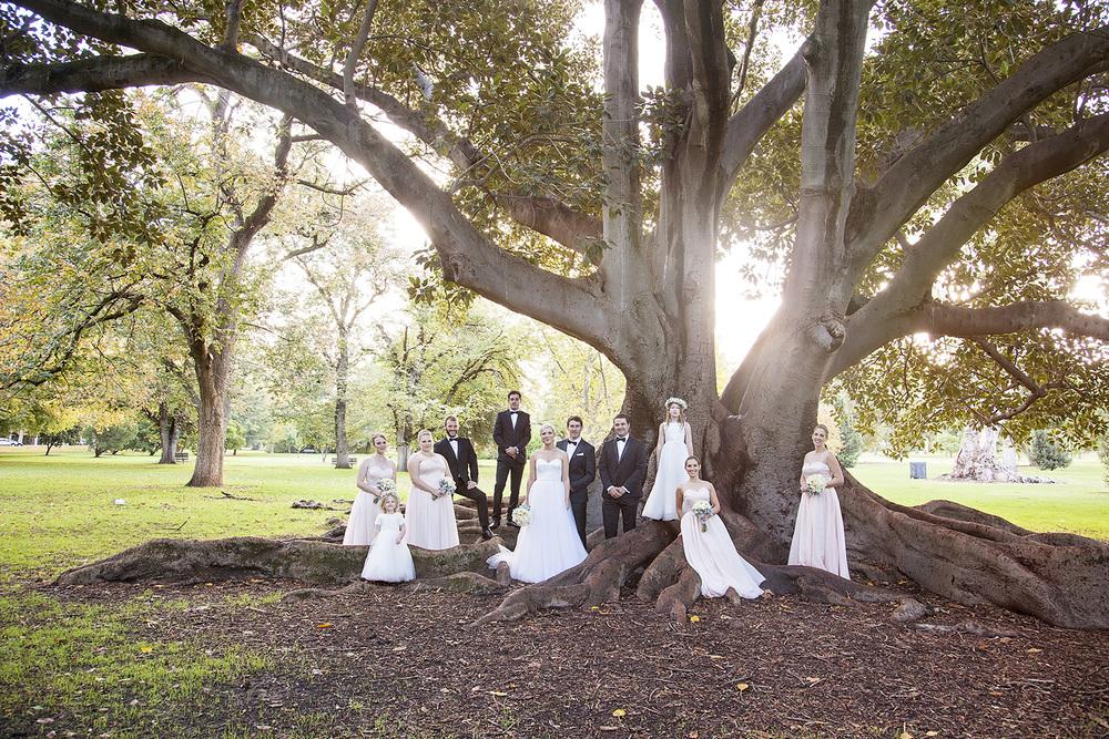 Stunning Adelaide Botanic Gardens Wedding 34.jpg