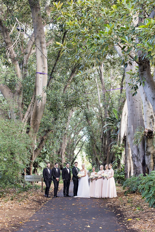 Stunning Adelaide Botanic Gardens Wedding 36.jpg
